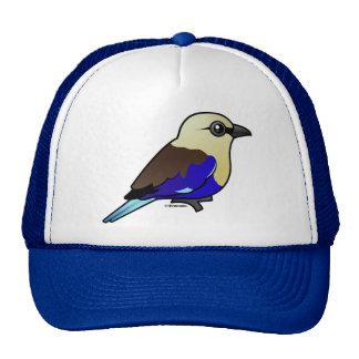 Blue-bellied Roller Cap
