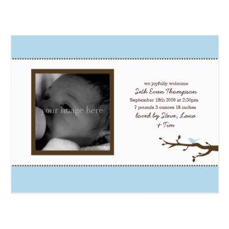 Blue Bird Baby Announcement Postcard