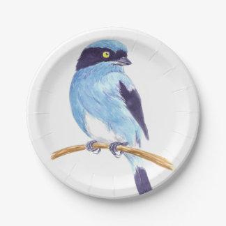 Blue bird paper plate