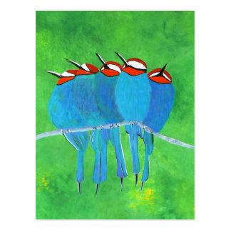 Blue Birds Postcard