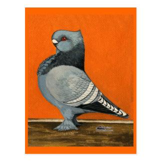 Blue Blondinette Pigeon Postcard