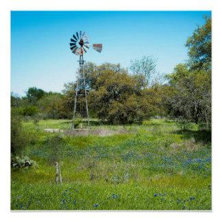 blue bonnet farm