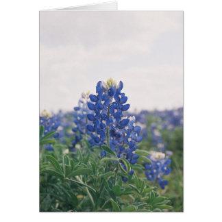 Blue Bonnet Greeting Card
