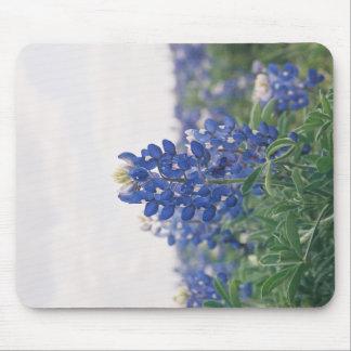 Blue Bonnet Mouse Pad