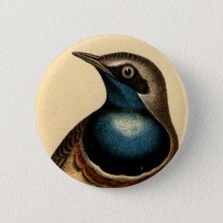 Blue Breasted Bird 6 Cm Round Badge