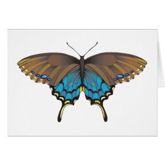 Blue Brown Butterfly Greeting Cards