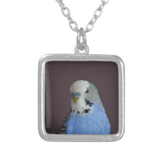 Blue Budgie Bird Animal Silver Plated Necklace