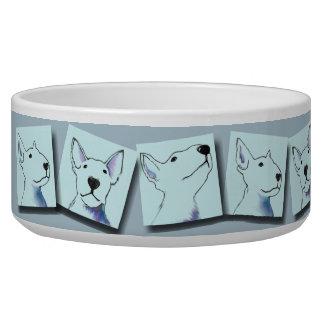 Blue bullterrier images food bowl