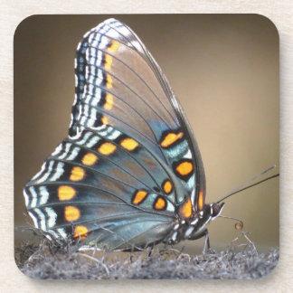 Blue Butterfly Drink Coaster