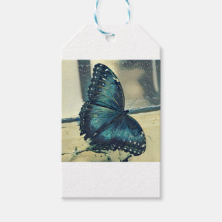 Blue Butterfly Gift Tags