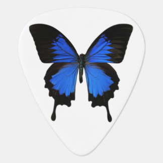 Blue Butterfly Guitar Pick
