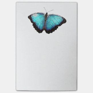 Blue Butterfly Photograph Sketch Post-it Notes
