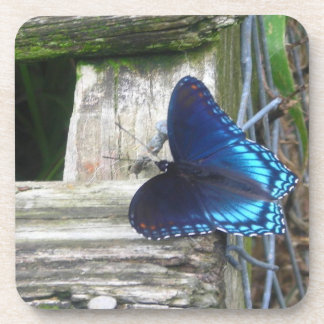 Blue Butterfly Resting Coasters