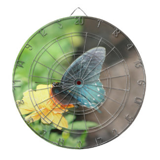 Blue Butterfly Yellow Coreopsis Summer Products Dartboard