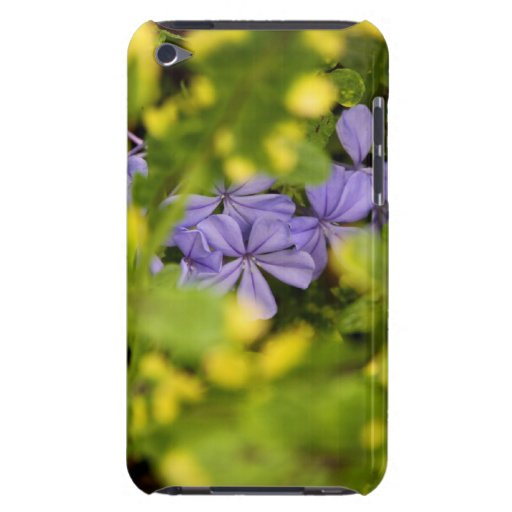 Blue Cape Plumbago Case-Mate iPod Touch iPod Touch Case