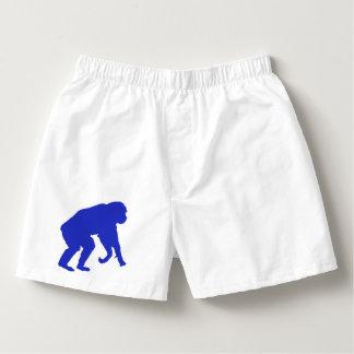 Blue Chimp Boxers