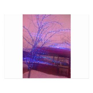 Blue Christmas lights Postcard