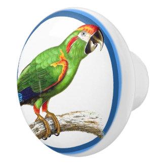 Blue Circles Macaw Parrot Bird Animal Knob