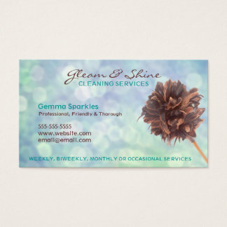 Blue Cleaning Services Business Cards