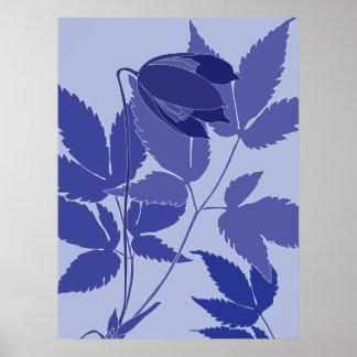 blue clematis print
