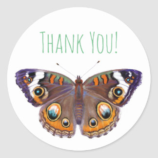 Blue Common Buckeye Butterfly Realistic Painted Classic Round Sticker