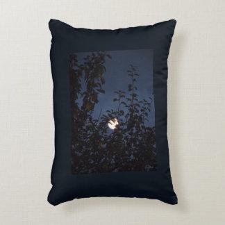 blue cushion harms natural full moon
