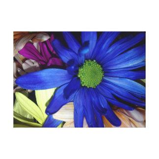 Blue Daisy Gallery Wrap Canvas