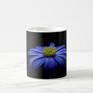 Blue Daisy Gerbera Flower on a Black background Mug