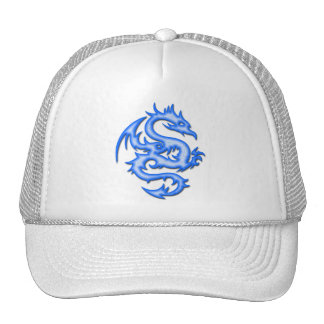 BLUE DRAGON HATS