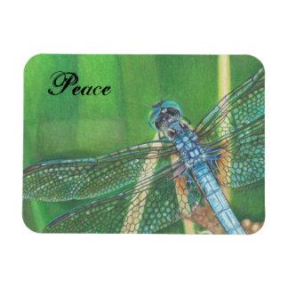 Blue Dragonfly color pencil art on Magnet