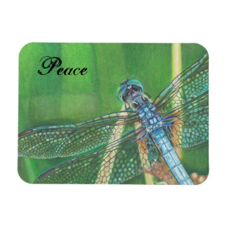 Blue Dragonfly colour pencil art on Magnet