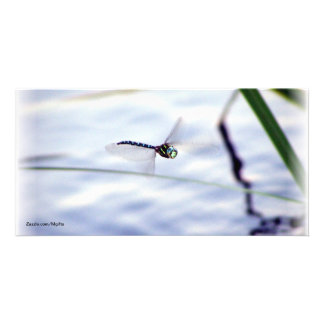 Blue Dragonfly Photo Greeting Card