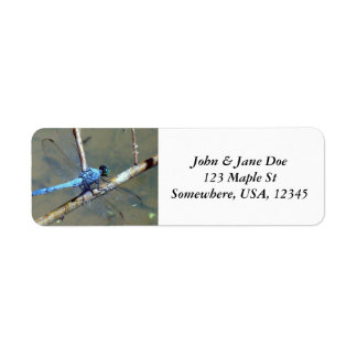 Blue DragonFly Return Address Label