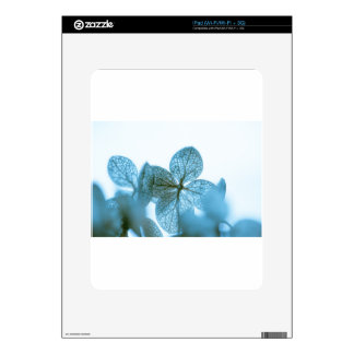 Blue Dream Decal For The iPad