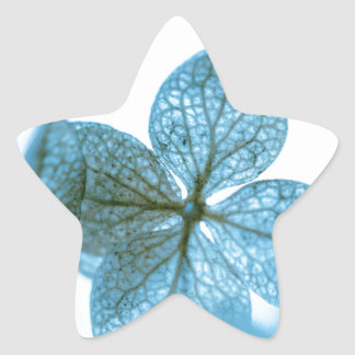 Blue Dream Star Sticker