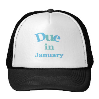 Blue Due in January Mesh Hats