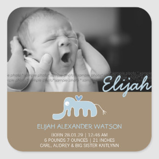 Blue Elephant Baby Boy Birth Announcement Sticker