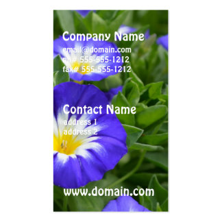 Blue Ensign Morning Glory Business Card Template