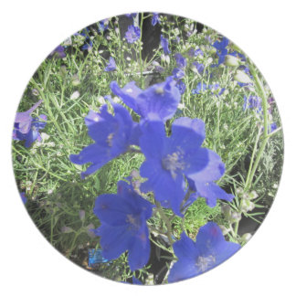 Blue Everywhere Party Plate