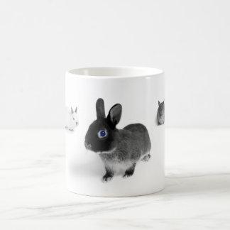 Blue Eye Bunnies Basic White Mug