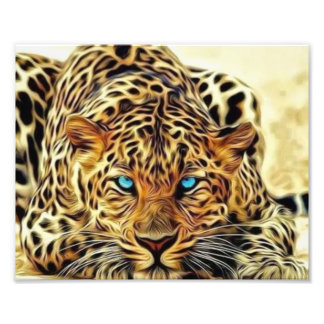 Blue Eye Leopard Photo Print