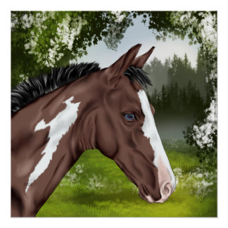 Blue Eyed Bay Paint Horse Foal Poster