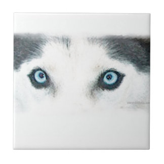 Blue eyed dogs can see the wind ceramic tile