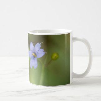 Blue Eyed Grass Wildflower Floral Mug Cup