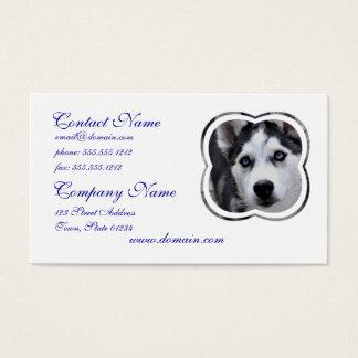 Blue Eyed Husky Business Cards