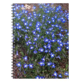 Blue Eyed Palace Lobelia Spiral Notebooks