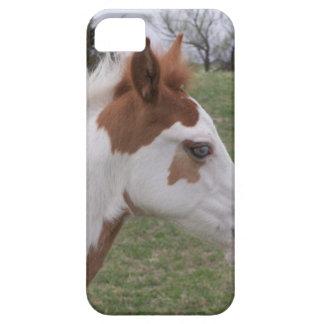 Blue eyed Pony iPhone 5 Case