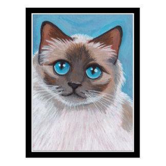 Blue Eyed Ragdoll Cat Portrait Painting Postcard