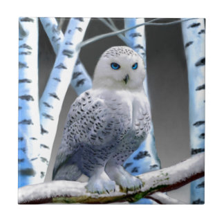 Blue-eyed Snow Owl Ceramic Tile