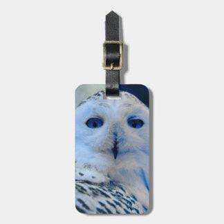 Blue Eyed Snow Owl Luggage Tag